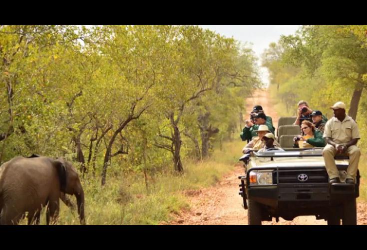 Photographic Tours To Madagascar