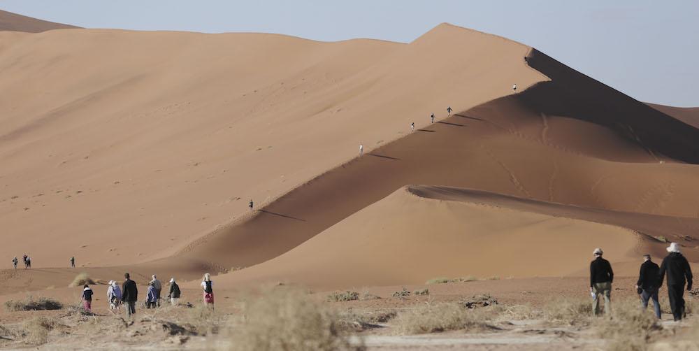 Rovos Rail Dune Walk