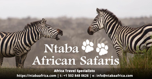 Africa travel specialists | Bespoke safaris to Africa | Ntaba