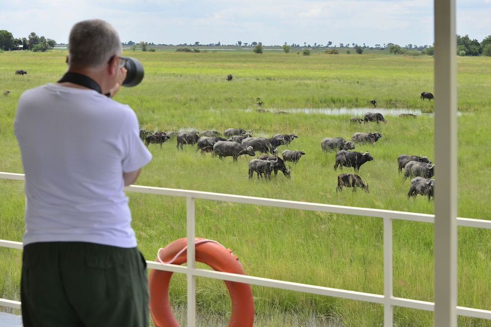 Game viewing onboard the Chobe princess