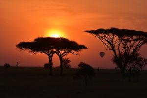 Sunset, Serengeti