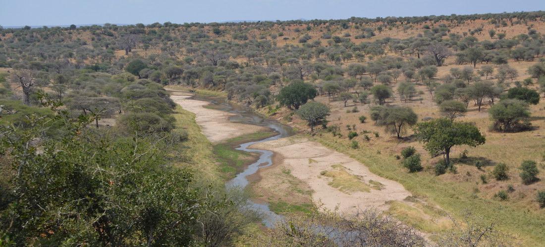 gonarezhou, zimbabwe