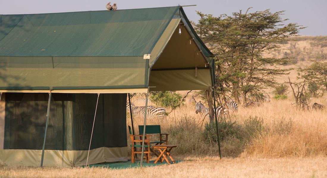 Nasikia Mobile, Serengeti