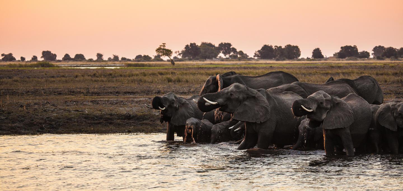 chirundu fishing trip zambia