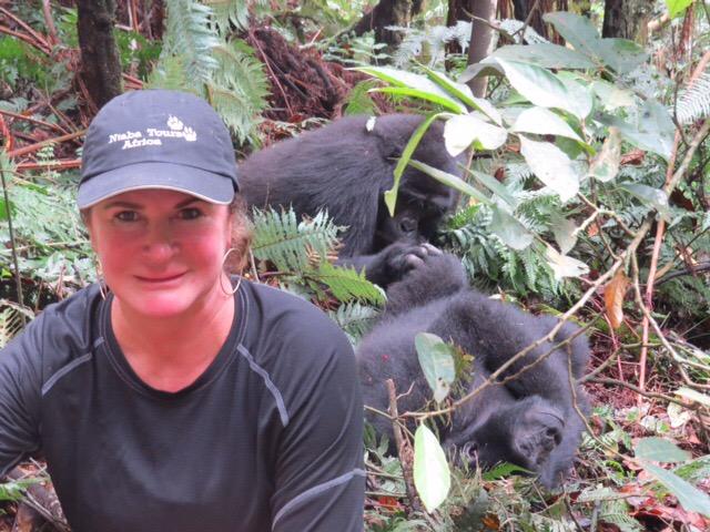 Gorilla group Rwanda