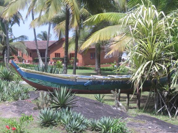coconut grove, elmina