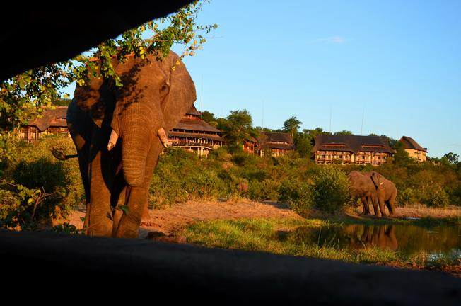 september safari africa