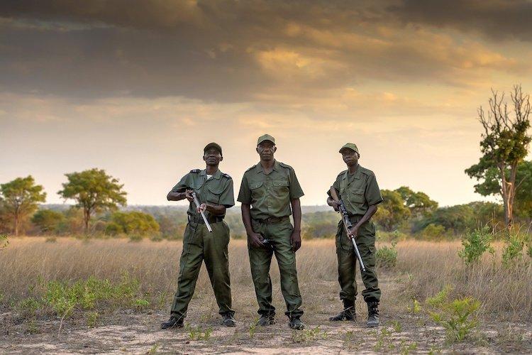 game guards zimbabwe